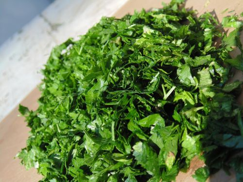 parsley green chopped parsley