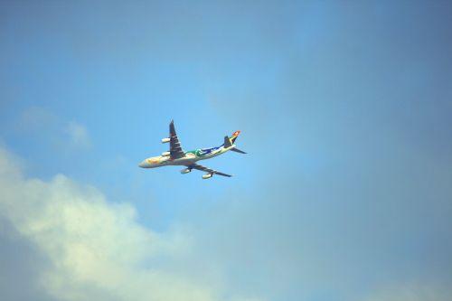 Passenger Jet In The Sky