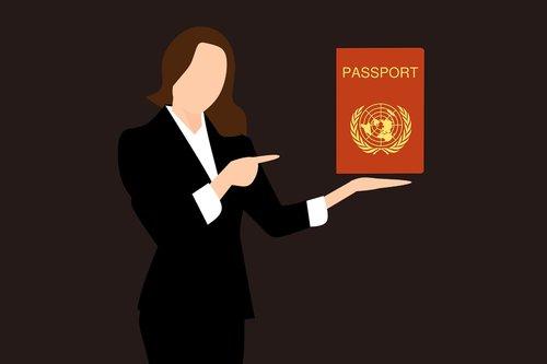 passport stamp  travel  passport cover