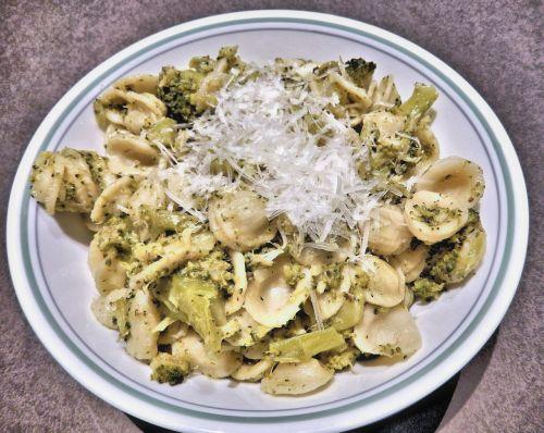 pasta orichetti pasta broccoli