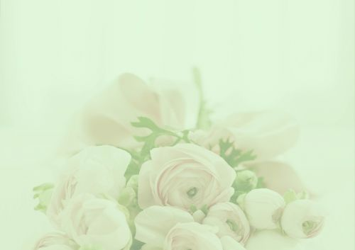 pastel roses background