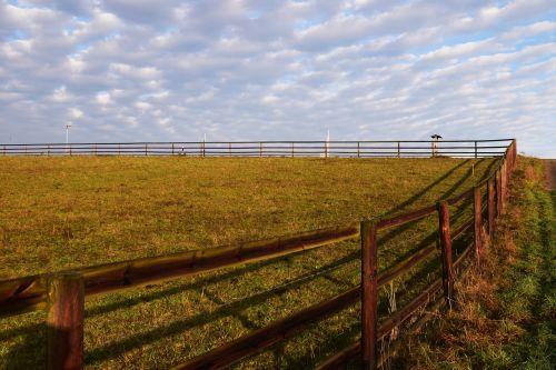 pasture background nature