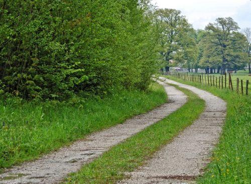 ganyklų tvora,juostos,kelias,toli,gamta,pieva,žalias,platus,toli,atstumas