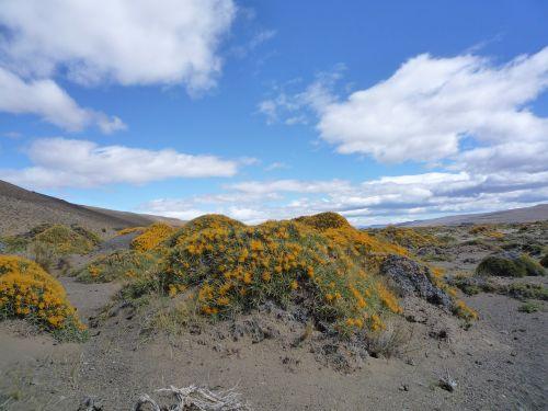 patagonia landscape spectacular
