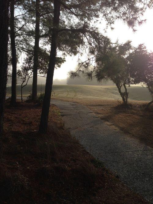 path golf green