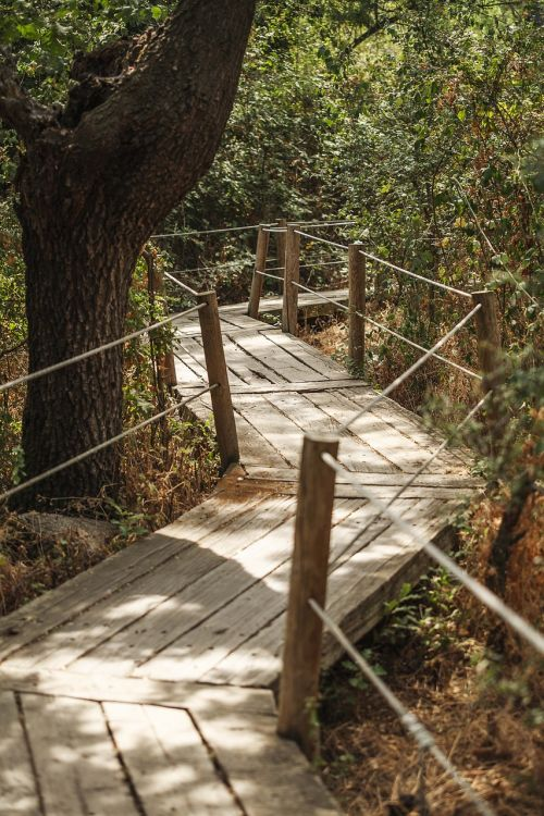 path zigzag lavirian