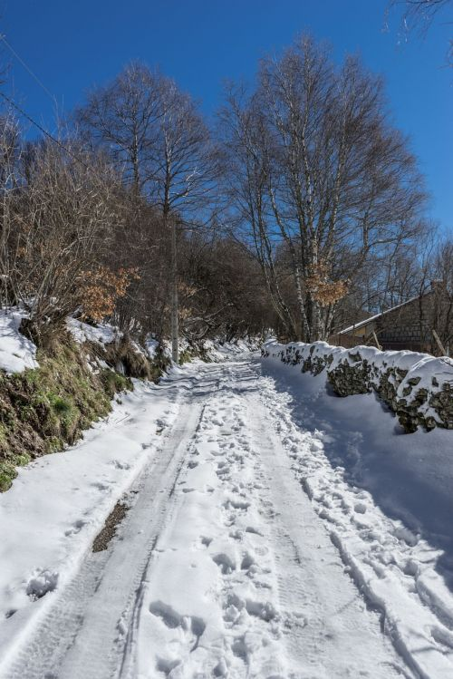 path snow nevado