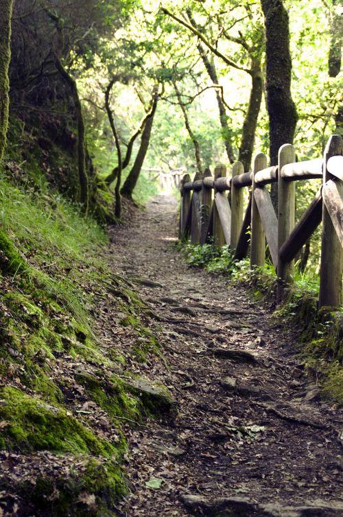 path galicia trail