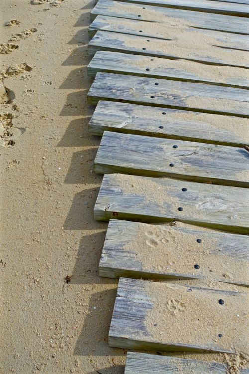 path planks wooden
