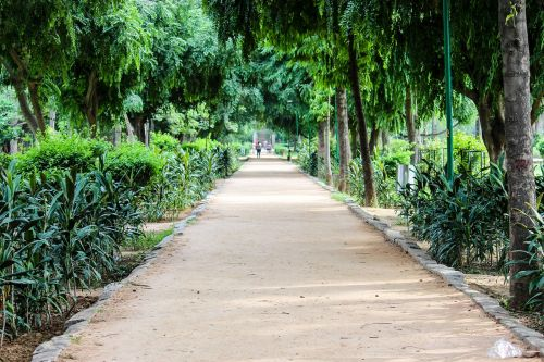 path greenery park