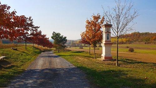 path  landscape  autumn