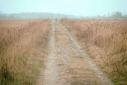 path horizon endless