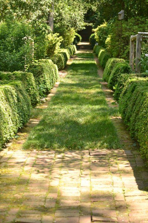 path garden stone