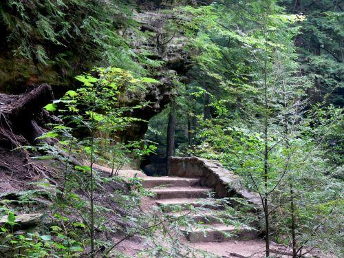 Path Under Cliff