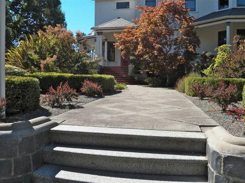 pathway walkway front yard
