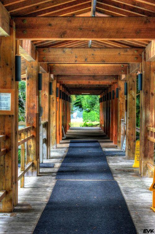 pathway beams lumbar
