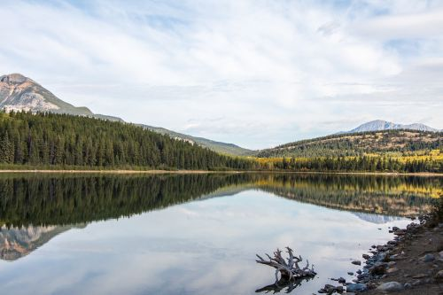 patricia lake lake jasper