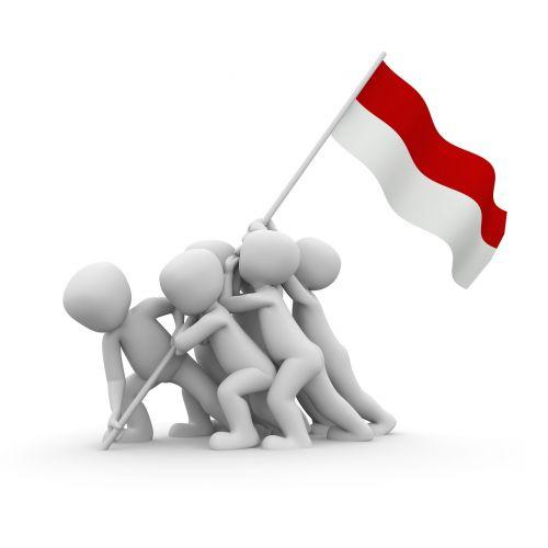 patriotas,vėliava,pasididžiavimas,patriotizmas,Lenkija