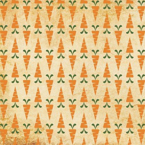 patter  carrot pattern  carrot print