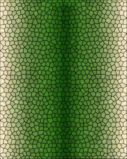 pattern reptile serpent