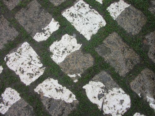 pavers road soil