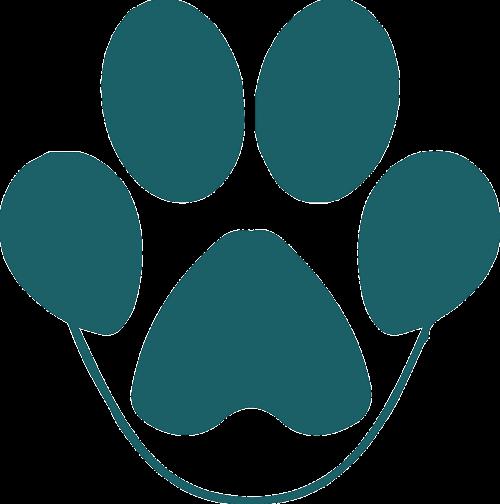 paw animal pet