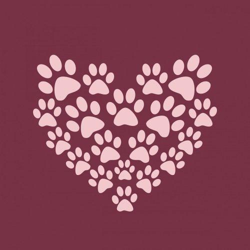 paw print paw prints heart