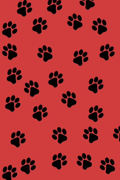 paw prints background animal