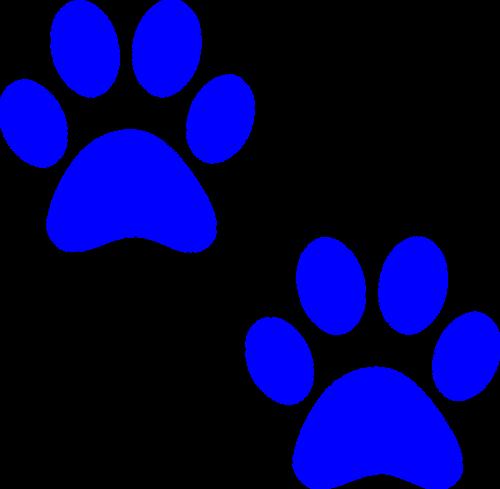paw prints dog paw