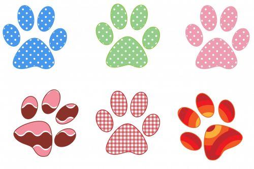 Paw Prints Colorful Patterns