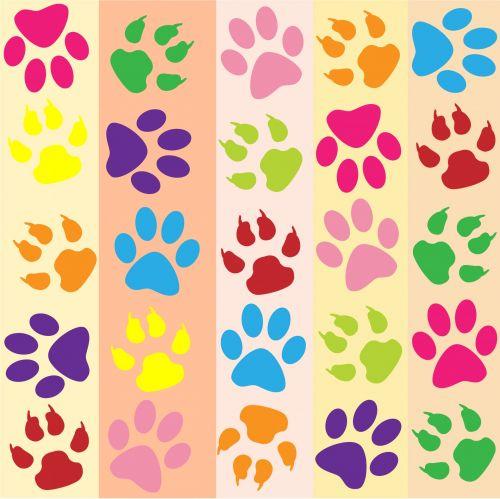 Paw Prints Colorful Wallpaper