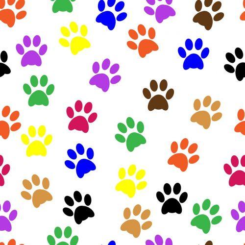 pawprints paw prints paw