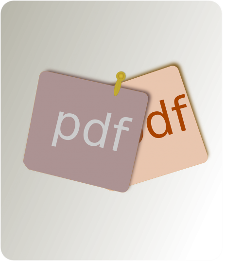 pdf file type document