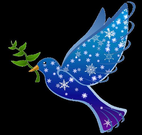 peace dove bird