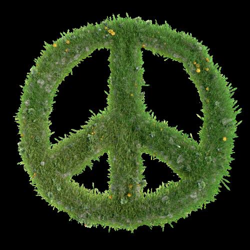 peace sign peace sign