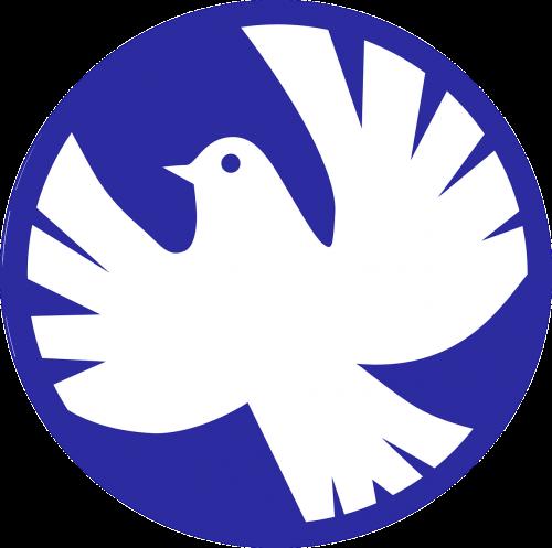 peace dove dove of peace dove