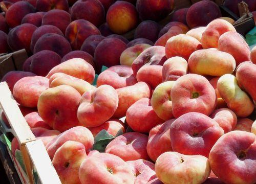 peach vineyard peach fruit