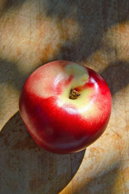 peach food fruit