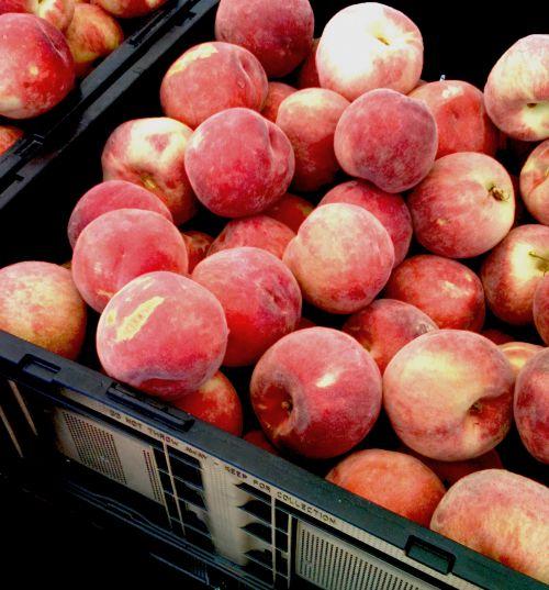 Peaches Fresh At Market