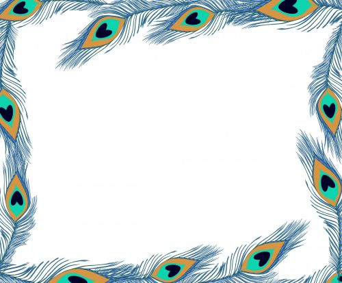 Peacock Feathers Frame