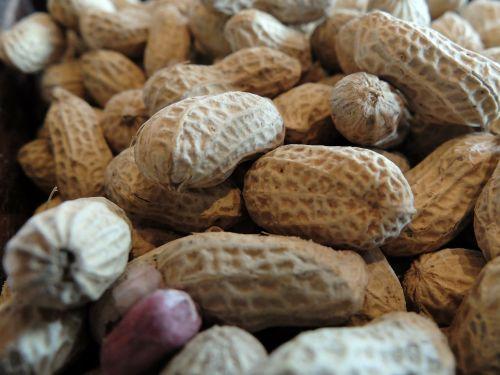 peanut and liu the accused