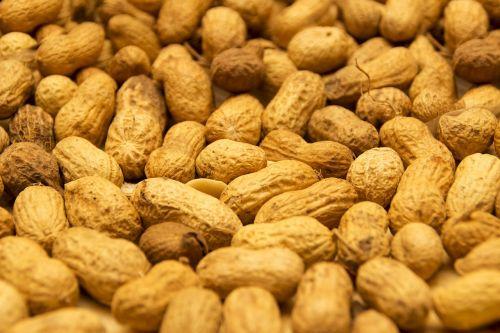 peanut peanuts dried fruit