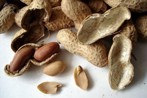 peanuts nuts cores