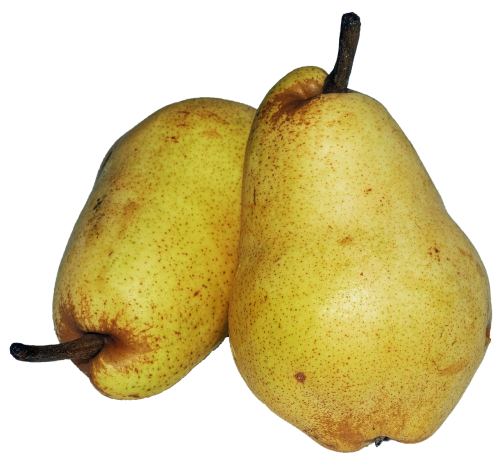 pear williams christ dessert fruit