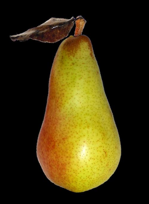 pear  fruit  food