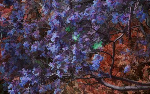 Pear Blossom Tree