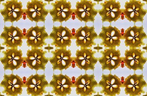Pear Slice Pattern