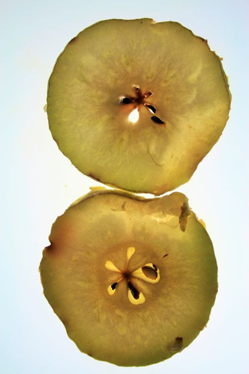 Pear Slices On Backlight