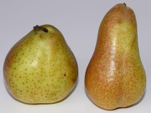 pears fruit pome fruit