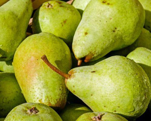 pears fruit bio